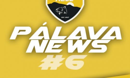 PÁLAVA NEWS #6