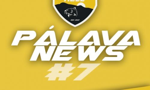 PÁLAVA NEWS #7